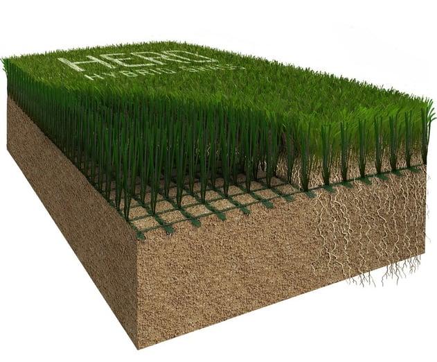 Hero Hybrid Grass Cut through
