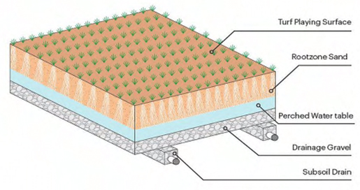 3D drawing of a typical Perched Water table profile