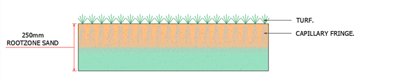 3D drawing of a rootzone sand profile